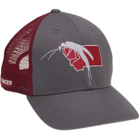 Image of Rep Your Water Montana Salmon Fly Hat