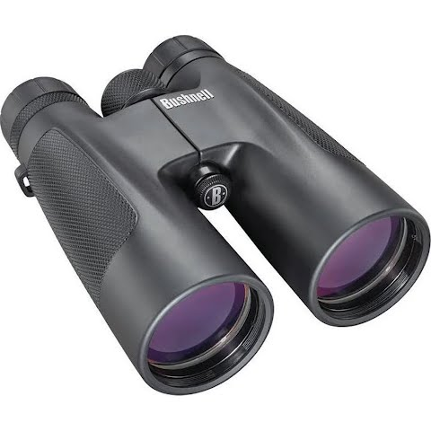 Bushnell Powerview 10x 50mm Roof Prism Binocular