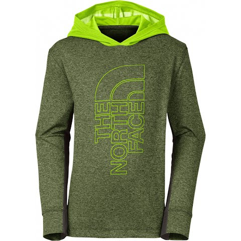Product image of The North Face Boy ' S Youth Long - Sleeve Reactor Hoodie - Terrarium Green