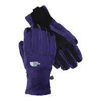 The North Face Women`s Denali Thermal ETIP Glove Image