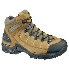 Danner Mens 453 GTX Hiking Boot Image