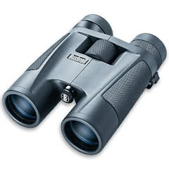 Bushnell PowerView 8-16x40 Zoom Binocular Image