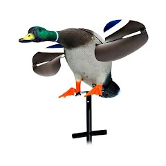Lucky Duck Lucky Junior Mallard Decoy Image