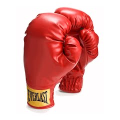 Everlast Laceless Traditional Style Boxing Gloves Image