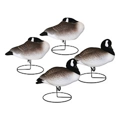 Hard Core Full Body Canada Geese: Resting 4 Pack Image