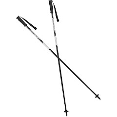 Swix Youth Techlite Jr Aluminum Ski Poles Image
