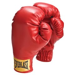 Everlast Youth Boxing Gloves Image
