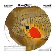Champion Re-Stick Deer Vitals Sight-In Targets Image