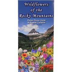 Wildflower Creations Pocket Rocky Mountain Wildflower Guide Image