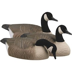 Avery Essential Series Honker Shells Canada Goose Decoys (12 Pack) Image