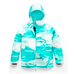 The North Face Girl's Youth Brianna Insulated Jacket Image