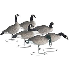Hard Core Rugged Series Full Body Canada Goose Touchdown Decoy Pack Image