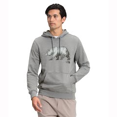 The North Face Men's TNF Bear Pullover Hoodie Image