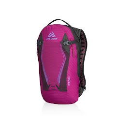 Gregory Amasa 6 Hydration Pack Image