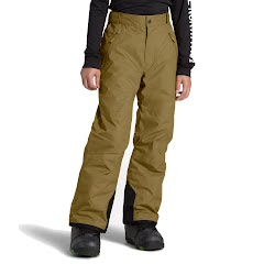 The North Face Youth Boys Freedom Insulated Pants Image