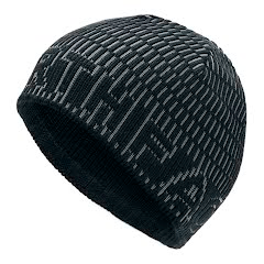 The North Face Texture Logo Beanie Image
