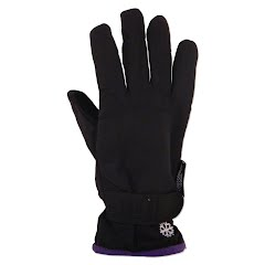 Grand Sierra Women`s Microfiber Commuter Glove Image