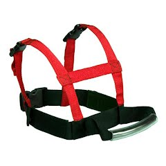 Lucky Bums Youth Grip `n Guide Sports Harness Image