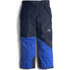 The North Face Boy`s Youth Freedom Insulated Pant Image