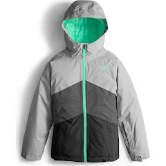 The North Face Girl`s Youth Brianna Insulated Jacket Image