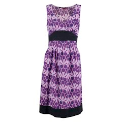 The North Face Women's Liberty Dress Image