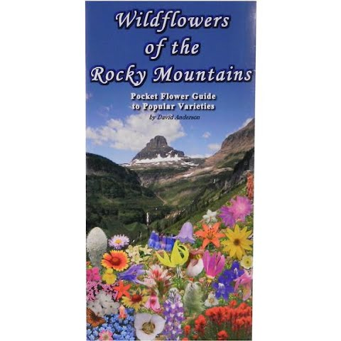 Image of Wildflower Creations Pocket Rocky Mountain Wildflower Guide