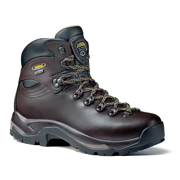 Asolo Mens Tps 520 Gv Hiking Boot