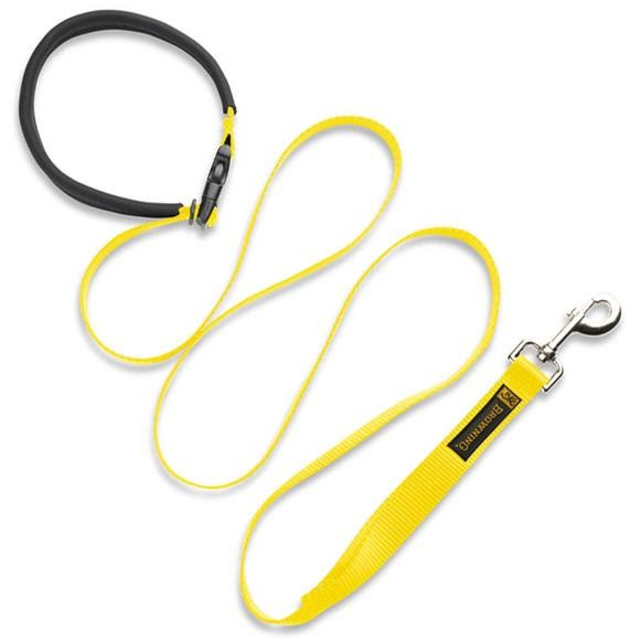 Browning Dog Training Lead Image