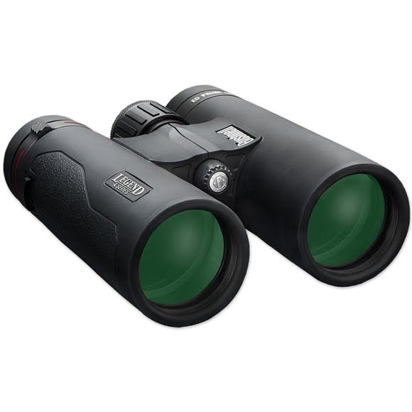 Bushnell 10x42 Legend L-Series 10x42mm Binocular Image