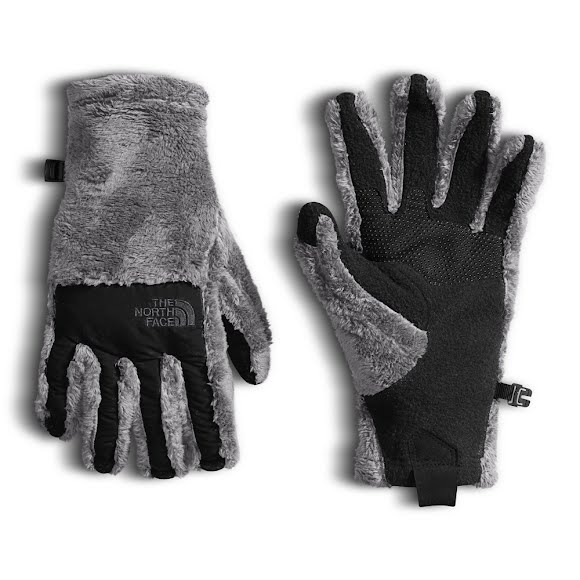 04ddd0f119a7 The North Face Women s Denali Thermal ETIP Glove Image